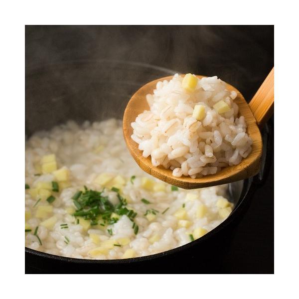 もち麦ダイエット 大麦 もち麦 館のもち麦 1kg スーパーもち麦 【予約販売1/23〜1/27出荷】1