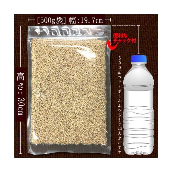 もち麦ダイエット 大麦 もち麦 館のもち麦 1kg スーパーもち麦 【予約販売1/23〜1/27出荷】4