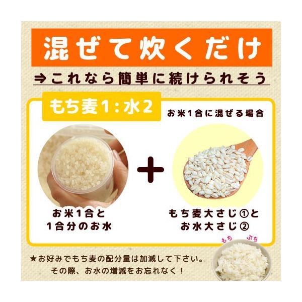 グルメ 米 ダイエット食品 もち麦  館のもち麦 1kg (500g×2) 大麦 βグルカン 送料無料 訳あり ポイント消化|shizennoyakata|05