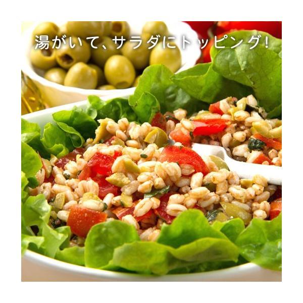 グルメ 米 ダイエット食品 もち麦  館のもち麦 1kg (500g×2) 大麦 βグルカン 送料無料 訳あり ポイント消化|shizennoyakata|08
