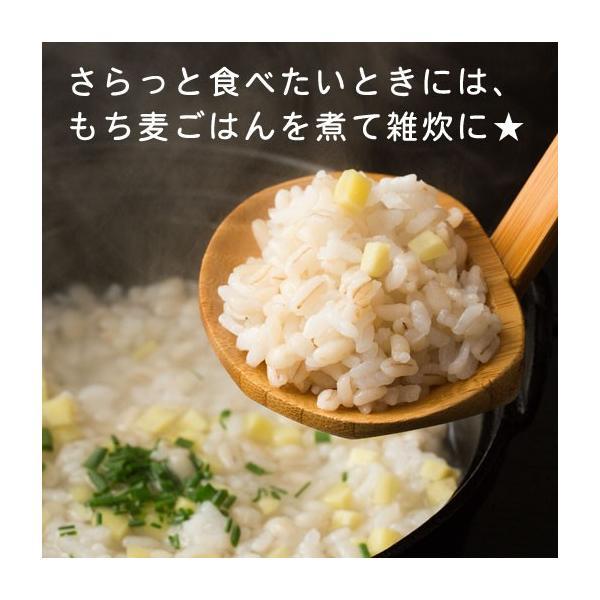 グルメ 米 ダイエット食品 もち麦  館のもち麦 1kg (500g×2) 大麦 βグルカン 送料無料 訳あり ポイント消化|shizennoyakata|10