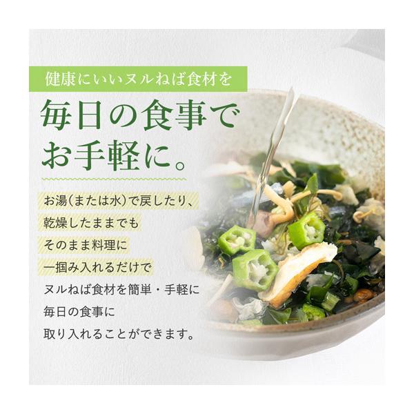 送料無料 ヌルねば料理に使うおいしい具材 40g×2 湯戻し簡単 時短 おくら ねばねば ネバネバ きのこ わかめ 海藻 サラダ 丼|shizennoyakata|03