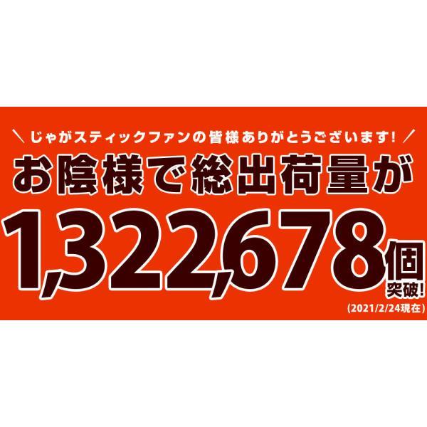 おつまみ 訳あり お菓子 じゃがスティック ピザ味 220g 訳あり ポイント消化 500ポイント|shizennoyakata|06