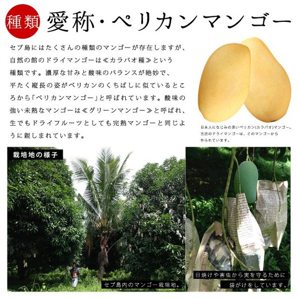マンゴー わけあり訳あり マンゴー ドライマンゴー 不揃いの端っこセブ島半生ドライマンゴー 1kg(500g×2) 送料無料 ポイント消化|shizennoyakata|04