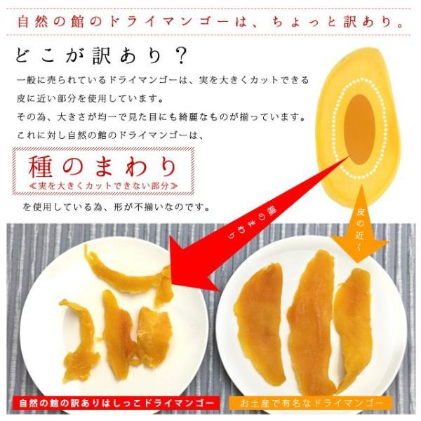 マンゴー わけあり訳あり マンゴー ドライマンゴー 不揃いの端っこセブ島半生ドライマンゴー 1kg(500g×2) 送料無料 ポイント消化|shizennoyakata|06