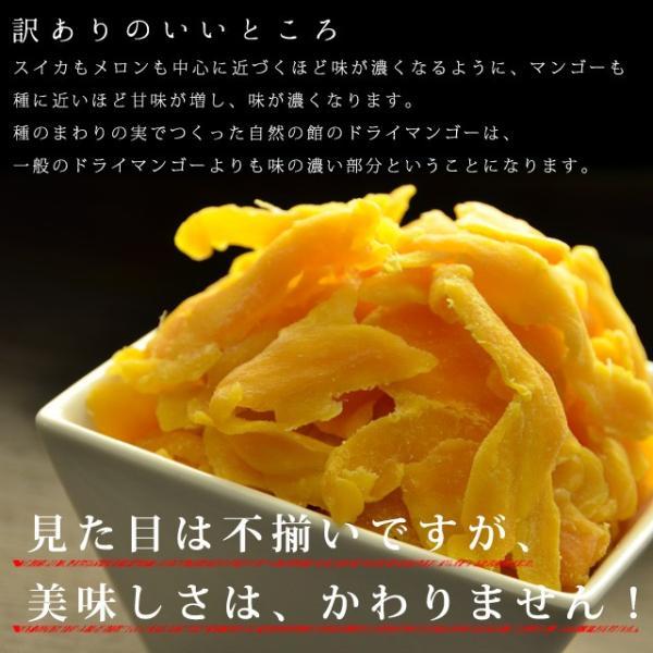 マンゴー わけあり訳あり マンゴー ドライマンゴー 不揃いの端っこセブ島半生ドライマンゴー 1kg(500g×2) 送料無料 ポイント消化|shizennoyakata|07