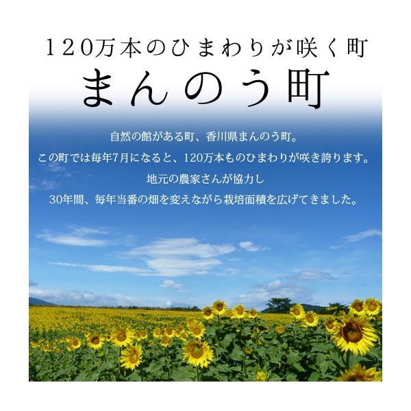 新発売記念価格 まんのうひまわりオイル 90g×2本セット ギフト 低温圧搾 送料無料 shizennoyakata 03