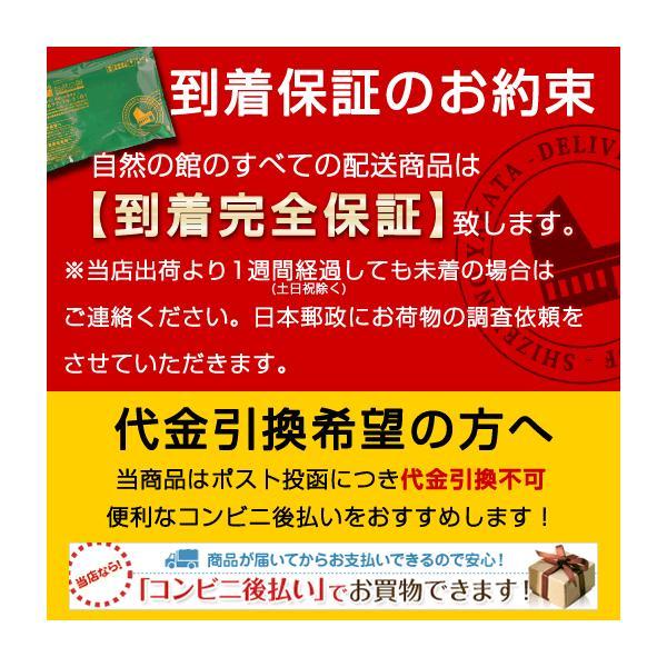 ラーメン お試し つけ麺 讃岐つけ麺 2人前 魚介 豚骨早ゆで 4分 簡単 インスタント スープ|shizennoyakata|06