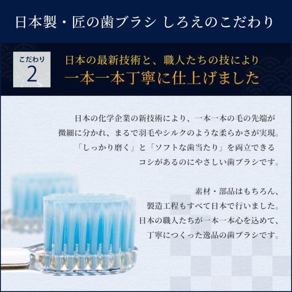 しろえ 歯ブラシ やわらかめ 2本セット ハブラシ はぶらし オーラルケア 歯磨き 歯みがき 歯 磨きやすい 1000円ポッキリ 父の日 shizenshop 03