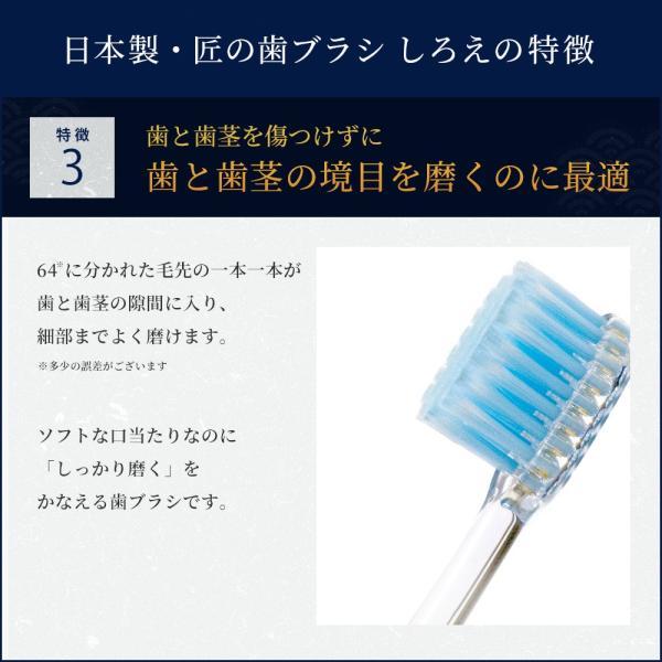 しろえ 歯ブラシ やわらかめ 2本セット ハブラシ はぶらし オーラルケア 歯磨き 歯みがき 歯 磨きやすい 1000円ポッキリ 父の日 shizenshop 07