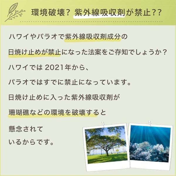 日焼け止めクリーム ノンケミカル 顔 全身 用 紫外線吸収剤不使用 オーガニック原料 母の日 ギフト プレゼント shizenshop 06