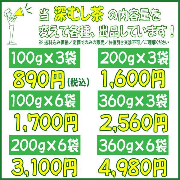 深むし茶100g×3袋 静岡茶 送料無料 お茶 日本茶 深蒸し茶 shizuoka-cha 04