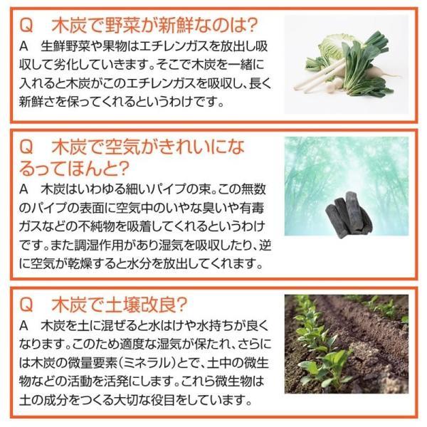 『紀州備長炭「小炭」』 280g前後 炭 木炭 白炭 浄水 炊飯 消臭 国産 水 shokunooishasan 13
