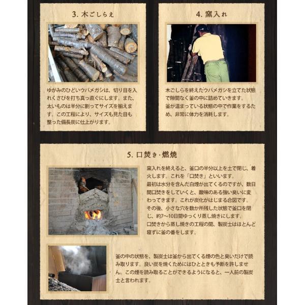 『紀州備長炭「小炭」』 280g前後 炭 木炭 白炭 浄水 炊飯 消臭 国産 水 shokunooishasan 15
