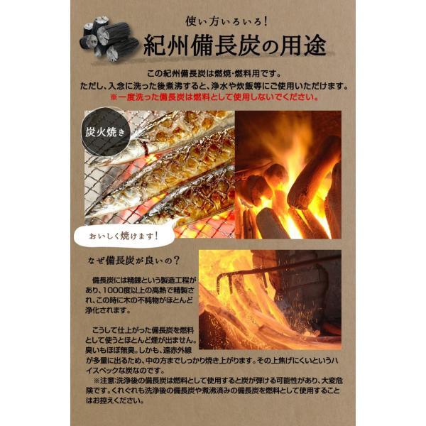 『紀州備長炭「小炭」』 280g前後 炭 木炭 白炭 浄水 炊飯 消臭 国産 水 shokunooishasan 08