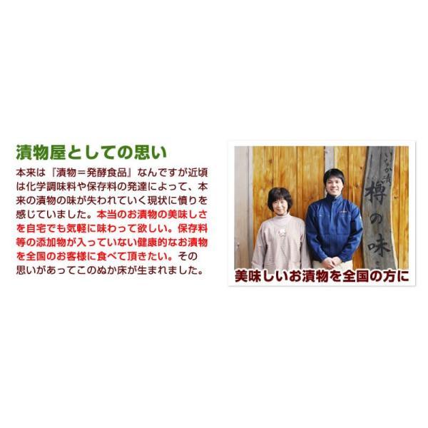 テレビでも話題のぬか床!漬けもん屋の『ぬか床800g(袋入り)』メール便送料無料!|shokunooishasan|06