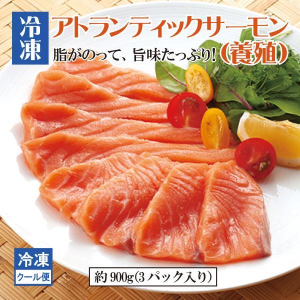 サーモン さけ サケ 鮭 アトランティックサーモン ロイン 冷凍 寿司 刺身