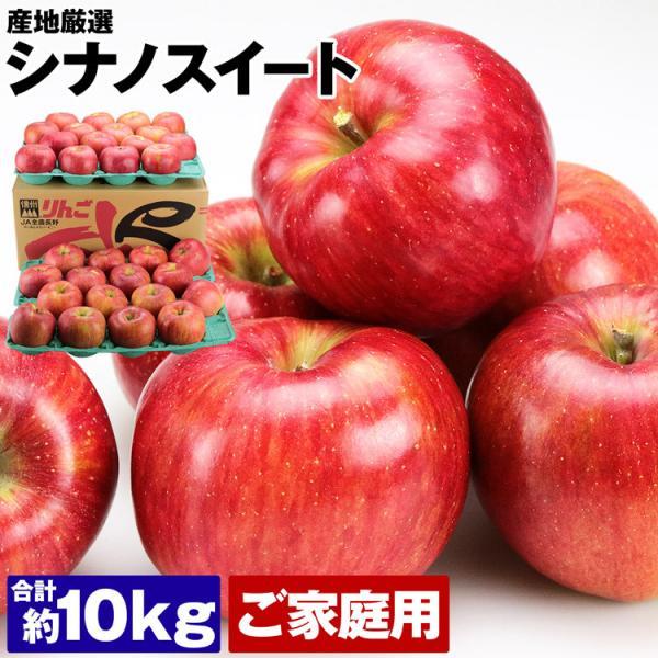 りんご 10kg シナノスイート 訳あり品 ご家庭用 産地厳選 32〜40玉 丸秀 冷蔵便 同梱不可 指定日不可 りんご 三兄弟 リンゴ 林檎 フルーツ 果物 旬