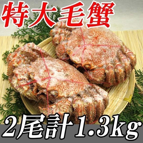 北海道産 特大毛蟹 2尾セット 計1.3kg 1尾平均650g ( ギフト/ケガニ/毛ガニ) 冷凍便 ギフト