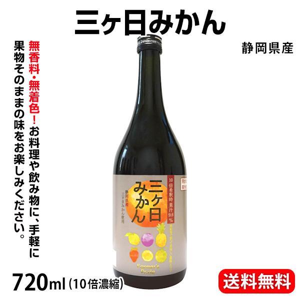 三ヶ日みかん 静岡 日本果汁 産直