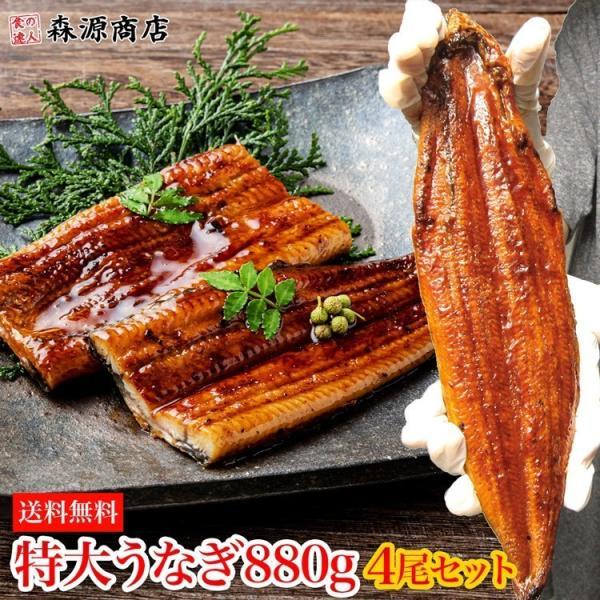 うなぎ 鰻 タレ付き 焼きウナギ 約880g (220g×4尾) 4本 特大 かば焼き 蒲焼き 中国産 冷凍便 ギフト お取り寄せ
