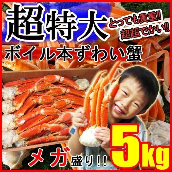 ズワイガニ 5kg 特大 脚 ボイル ずわい蟹 足 カニ かに 冷凍
