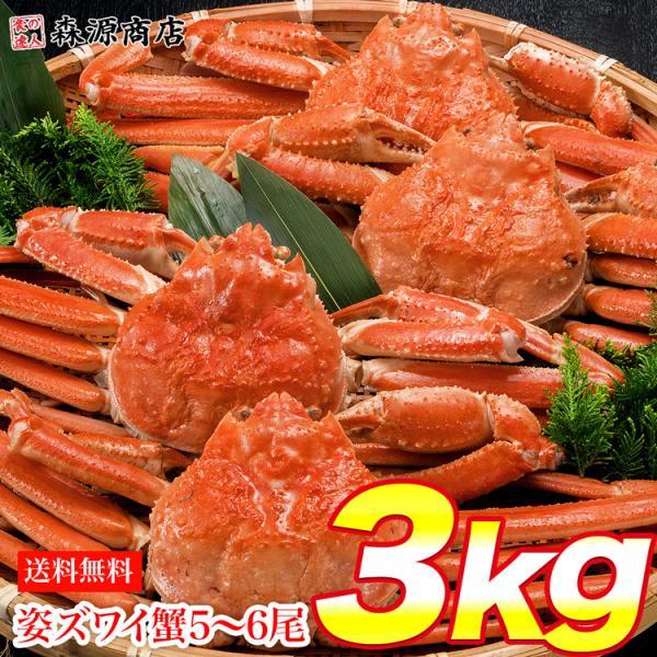 姿ずわいがに 3kg セット (5〜6尾) カニ味噌 ズワイガニ カニ かに 蟹 ギフト