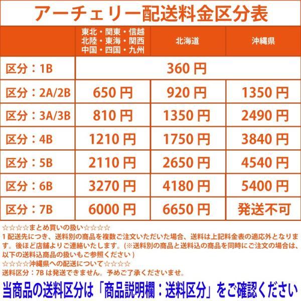 TaoTronics  美品 有線イヤホン カナル型イヤホン MEMSマイク モニタリングモード付き TT-EP002 家電 中古