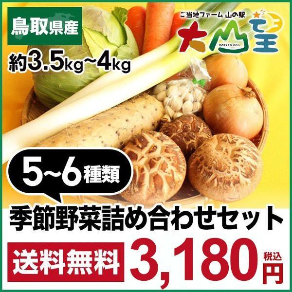 送料無料 鳥取県 季節 野菜 詰合せ 5〜6種類 約3.5kg〜4kg 野菜 詰め合わせ セット 新鮮な旬野菜をお届け|shop-daisenbou