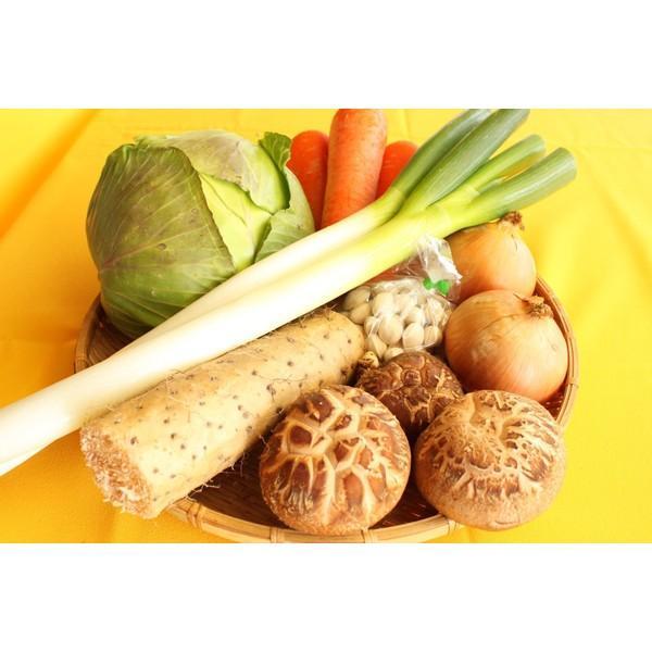 送料無料 鳥取県 季節 野菜 詰合せ 5〜6種類 約3.5kg〜4kg 野菜 詰め合わせ セット 新鮮な旬野菜をお届け|shop-daisenbou|02