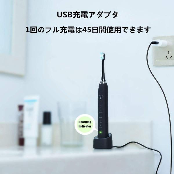 電動歯ブラシ 超音波歯ブラシ IPX7防水 携帯 音波式 振動歯ブラシ 2分タイマー 5点クリーニングモード 2本歯ブラシヘッド ブラック|shop-frontier