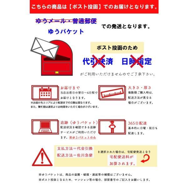 旅行バッグ キャリーケース スーツケース対応 旅行 便利グッズ 折りたたみ バック|shop-mg|08