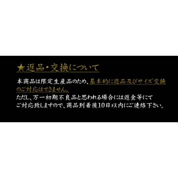 【送料無料】ファイターズロゴ入り安全スニーカー[北海道日本ハムファイターズ HOKKAIDO NIPPON-HAM FIGHTERS 安全靴]|shop-mitsuuma|06