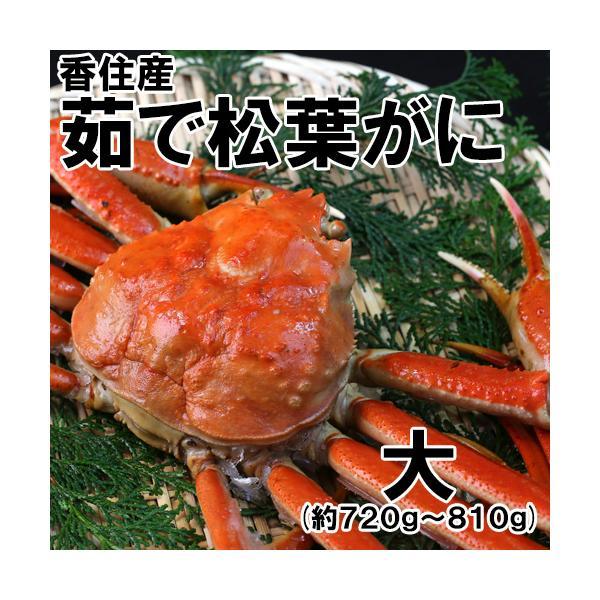 香住産・茹で松葉がに(特大)(約700g)1匹(カニ かに 蟹 ズワイガニ ずわいがに 松葉ガニ 松葉蟹 お取り寄せ 産地直送)