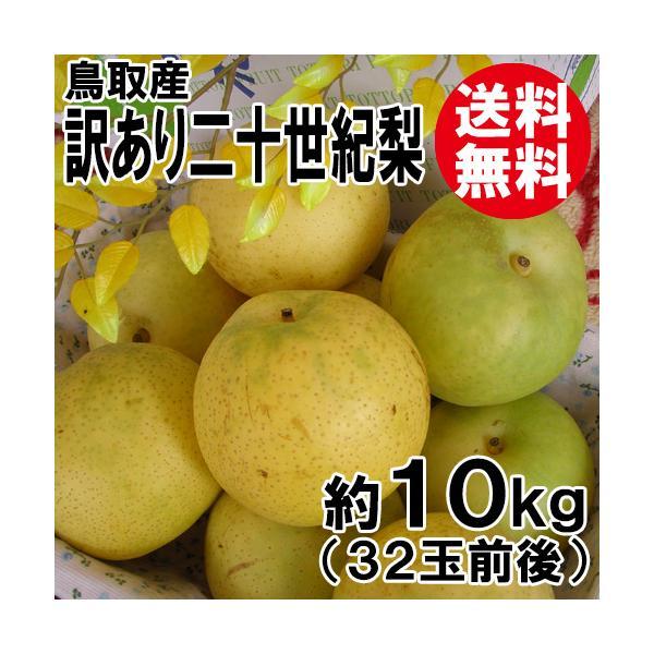 [訳あり]鳥取産・二十世紀梨[20世紀梨]10kg(34玉前後)[送料無料]