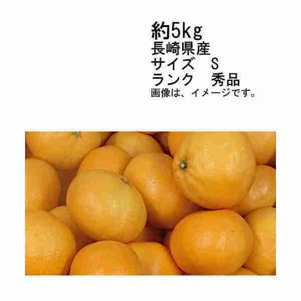 送料無料 予約 11月下旬以降発送 西海 味まるみかん 長崎県 約5kg サイズS 秀品