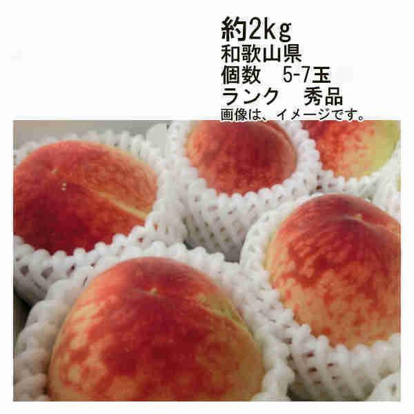 送料無料 予約 7月以降出荷予定 紀州 和歌山の桃 和歌山県産 約2kg 5-7玉 ランク 秀品