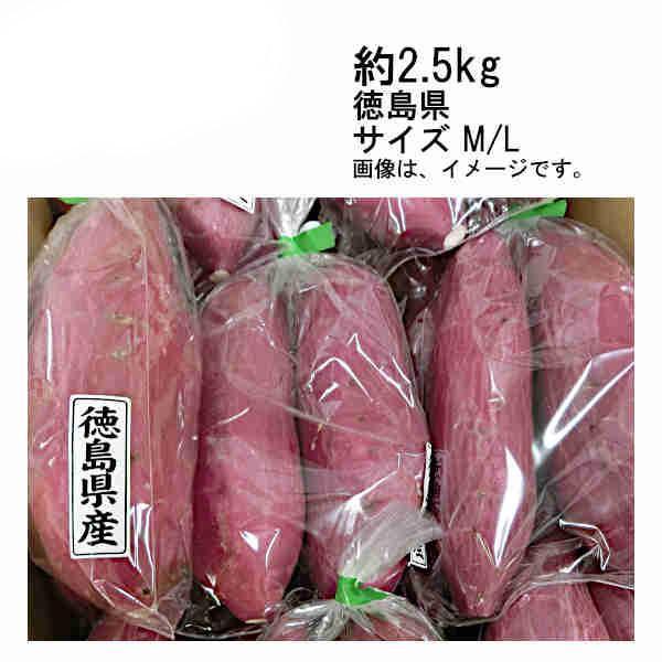 送料無料 予約 9月上旬以降出荷予定 鳴門金時 さつまいも 里むすめ 約2.5kg 徳島県産 サイズ M/L
