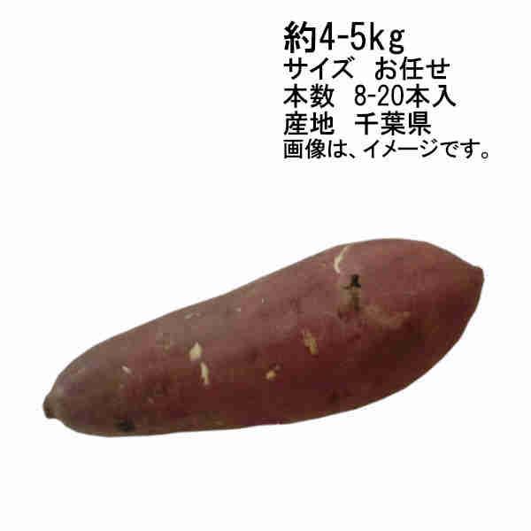 送料無料 予約 9月上旬以降出荷予定 紅あずま さつまいも 約5kg 千葉県産 サイズ M/L