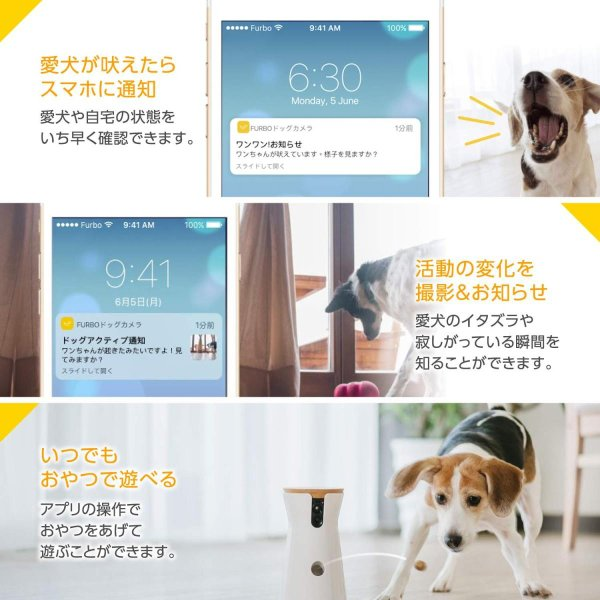 Furbo ドッグカメラ : ペットカメラ 飛び出すおやつ 写真 動画 双方向会話 犬 留守番 iOS Android AI通知 shopnoa 06