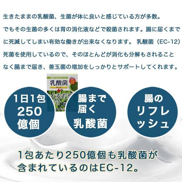 青汁 乳酸菌250億個含有 500ポイント消化 大麦若葉青汁 大葉若葉 置き換えダイエット 3g×24本入 オープン記念 セール 送料無料|shopping-lab|02