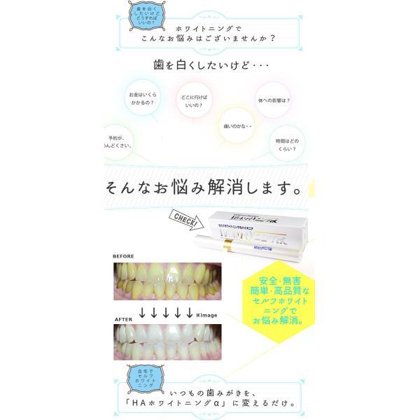 歯ホワイトニング 電動ハブラシ HAホワイトニングα オーラル ...