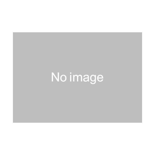 タミヤ フェスタジョーヌ L グリーンスペシャル (ポリカボディ/MSシャーシ) 【ミニ四駆特別企画】 95485 2019年7月発売予定|shoptakumi