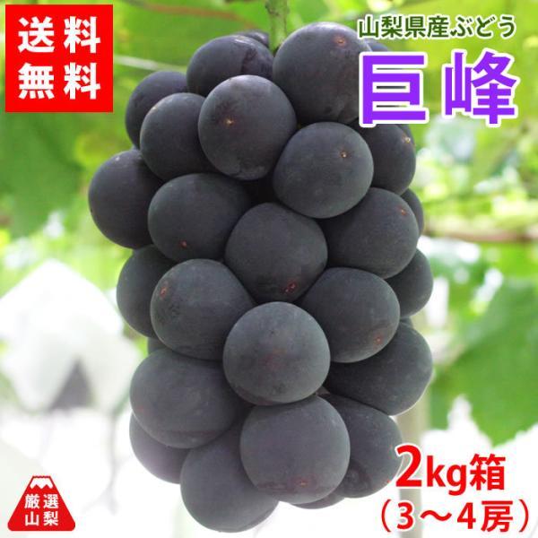 ぶどう 巨峰 山梨県産 送料無料 農家直送 種なしブドウ 巨峰2kg箱 (3〜4房)