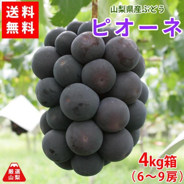 ぶどう ピオーネ 山梨県産 送料無料 農家直送 種なしブドウ 高級品種 ピオーネ4kg箱 (6〜9房)