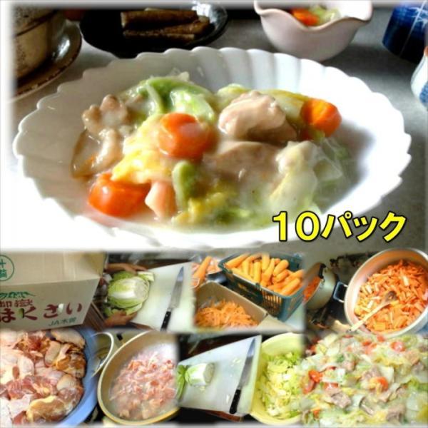 鶏肉と白菜のクリーム煮10パック 惣菜 お惣菜 おかず  ギフト  おつまみ お試し セット 冷凍 無添加 お弁当 詰め合わせ 食品 煮物