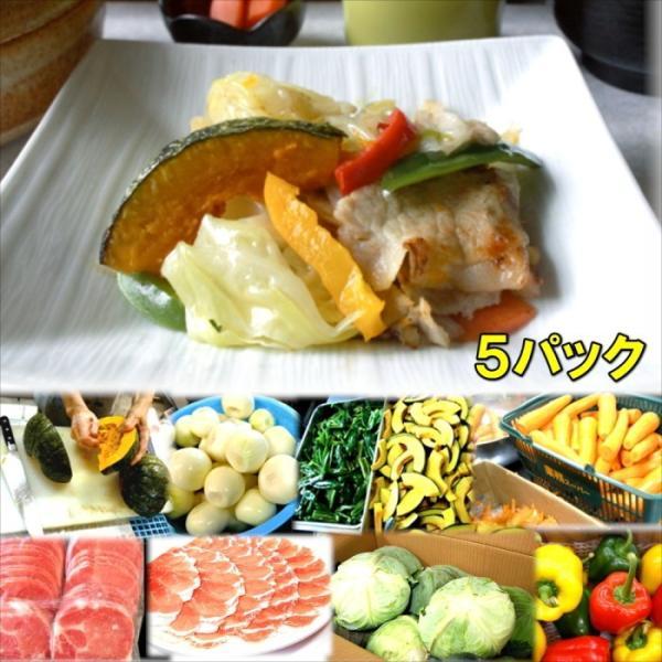 具たくさん肉野菜炒め5パック 惣菜 お惣菜 おかず ギフト  おつまみ お試し セット 冷凍 無添加 お弁当 詰め合わせ 食品 煮物
