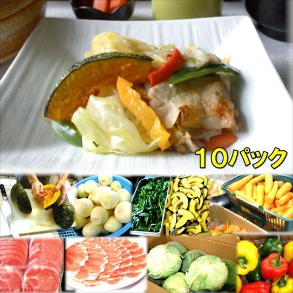 具たくさん肉野菜炒め10パック  惣菜 お惣菜 おかず ギフト おつまみ お試し セット 冷凍 無添加 お弁当 詰め合わせ 食品 煮物