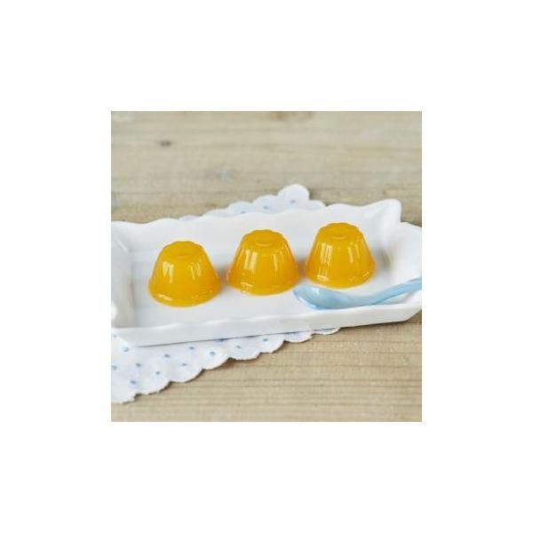 植物繊維 たっぷり 沖縄県 マンゴーゼリー 21g×14個 おやつ デザート お土産 高級 内祝 出産祝い お返し 法人 ギフト 贈り物 にぴったりな