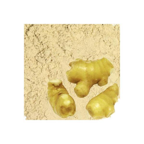 しょうがパウダー 高知県産 しょうが粉末 国産 業務用5Kg 乾燥生姜粉末 ショウガパウダー 生姜茶 しょうが茶 スパイス 調味料 香辛料 お茶 送料無料